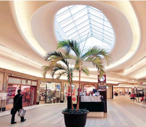 In addition to shops, the Cavendish Mall includes a food court, multiplex movie theatre and walk-in clinic. Photo: The Gazette.