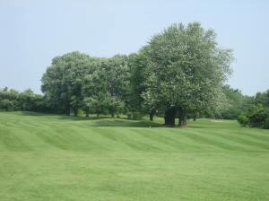 Meadowbrook is nothing short of an oasis that must remain green in perpetuity