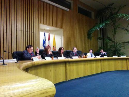 Public Council meeting November 2015